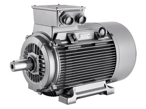 Zaisteny elektromotor typ 1MA7